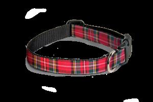 collar-happy-escoces