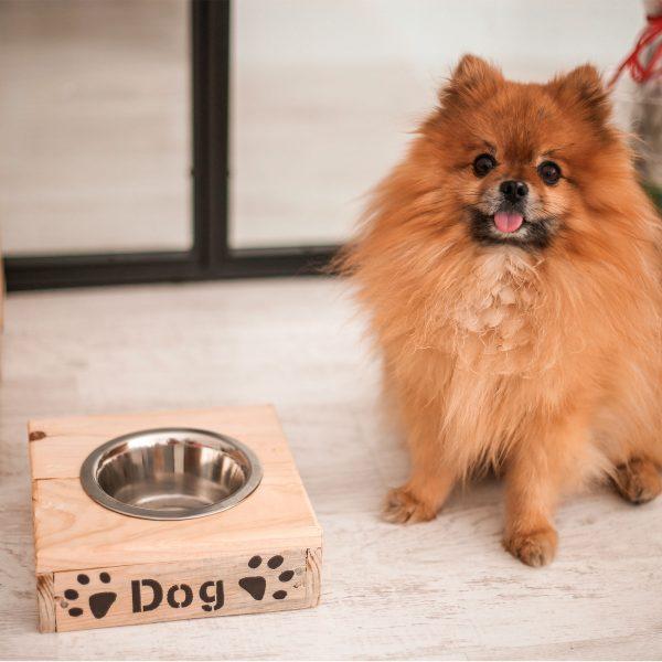 comedero para perro de madera